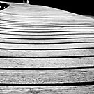 A Bench In Black and White by MotherNature