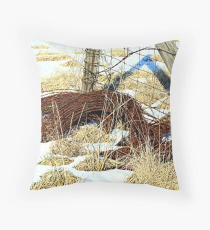 old wire fence Throw Pillow