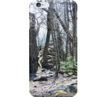 Grayson Highlands Trail iPhone Case/Skin