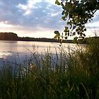 Sunset on Otter Lake by MichiganGirl
