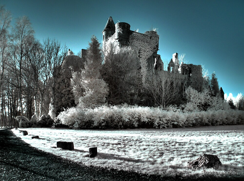 Buchanan Castle by Roddy Atkinson