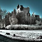 Buchanan Castle by Roddy Atkinson
