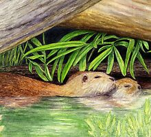 Otters Floating - Watercolor Pencil Drawing by M Rogers