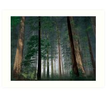 The Forest of Dean Art Print