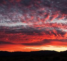 Glorious Australian Sunset by Marylou Badeaux