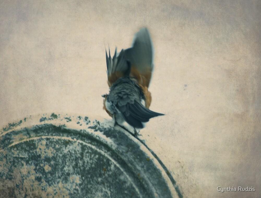 A Little Shiver by Cynthia Rudzis