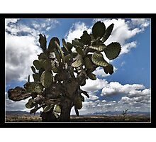 Road to San Miguel Photographic Print