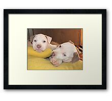 "Sweetpea And Tewie - ""Chillin!"" Framed Print"