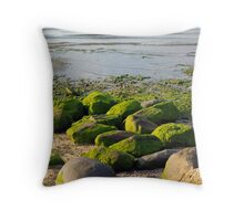 Moss Covered Throw Pillow