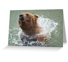 Bathing Bear Greeting Card