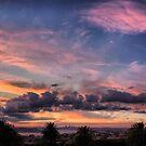 Caffyn Park panorama by andreisky