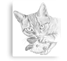 cat playing with toy Canvas Print
