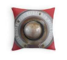 Glass Must Be Full Before and After Delivery Throw Pillow