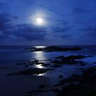 Sawtell Moonrise by Christopher Meder
