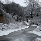 Snowy Landscape by Richard Williams