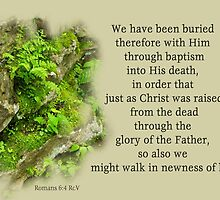 Buried through Baptism - Raised to Newness of Life~ Romans 6:4 by Robin Clifton