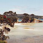 PA BEACH, GREAT BARRIER ISLAND, NEW ZEALAND.......! by Roy  Massicks