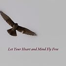 Heart & Mind by Rosemaree