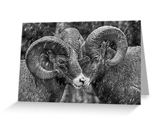 Rebel Rams Greeting Card