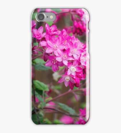 Shocking pink blossoms iPhone Case/Skin