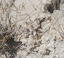 White Sands Formations by wprweb