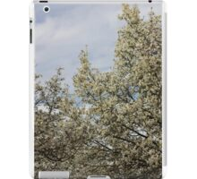 White blossoms, March sky iPad Case/Skin