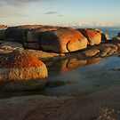 morning sunrise reflection Bay of Fires by DianneLac