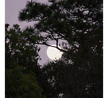 Peeking Moon Photographic Print