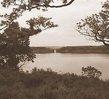 Lakes of Kilarney Kerry Ireland by James Cronin
