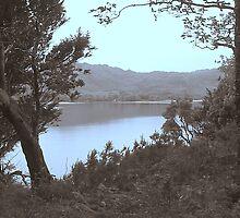 Killarney Lakes Kerry Ireland by James Cronin