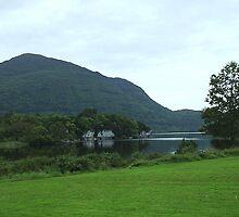 Killarney National Park by James Cronin