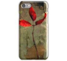Leaves of Autumn  iPhone Case/Skin
