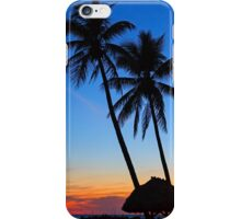Tropical Sunset iPhone Case/Skin