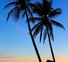 Tropical Sunset by Kenneth Keifer