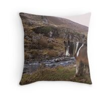 Horse Taking Refreshments Gap of Dunloe Co. Kerry!! Throw Pillow