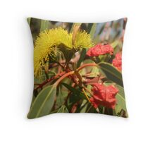 Australian Bottle Brush, flower and seed Throw Pillow