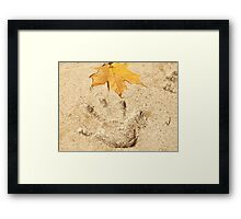 Touching Nature Framed Print
