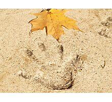 Touching Nature Photographic Print