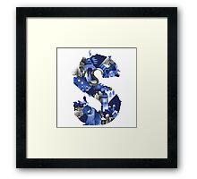 The S Framed Print