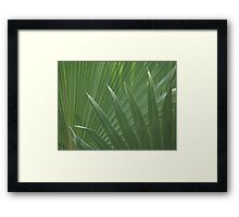 Overlapping Palms Framed Print