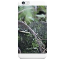 In Days Gone By iPhone Case/Skin