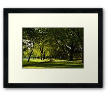 Sunny August Afternoon in the Park Framed Print