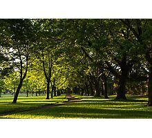 Sunny August Afternoon in the Park Photographic Print