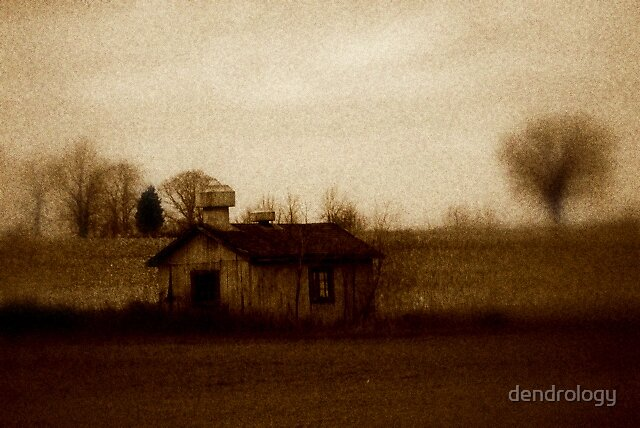 Once Upon A Time by dendrology