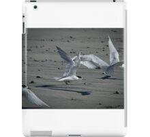 Flying Fairies  iPad Case/Skin