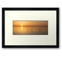 Wings at Sunrise Framed Print
