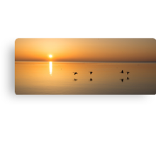 Wings at Sunrise Canvas Print