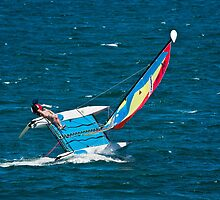 Hobie Cat on the Edge by Chris  Randall