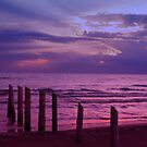 Sauble Beach at Dusk by Alyce Taylor