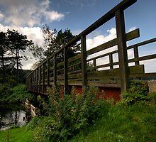 Grassy Bridge by jammysam1680